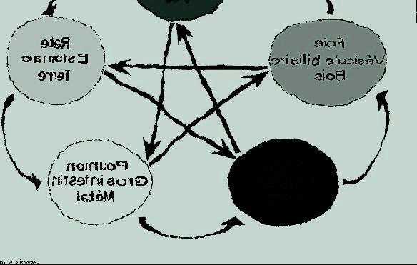 cinq-elements.jpg